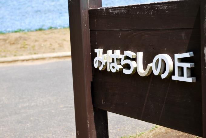 H25.04.26 ひたち海浜公園  (102).jpg