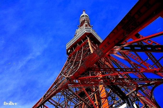 H28.02.17 東京タワー ベスト (40).jpg