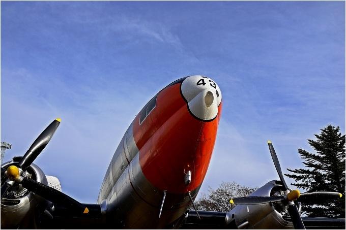 H28.12.04 所沢航空記念公園  (7).jpg